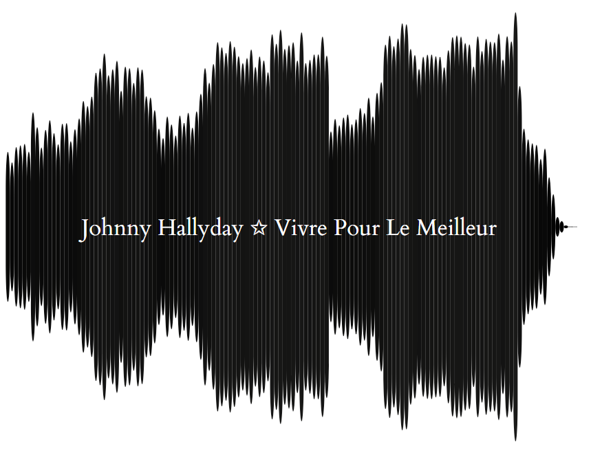 Johnny Hallyday Vivre pour le meilleur